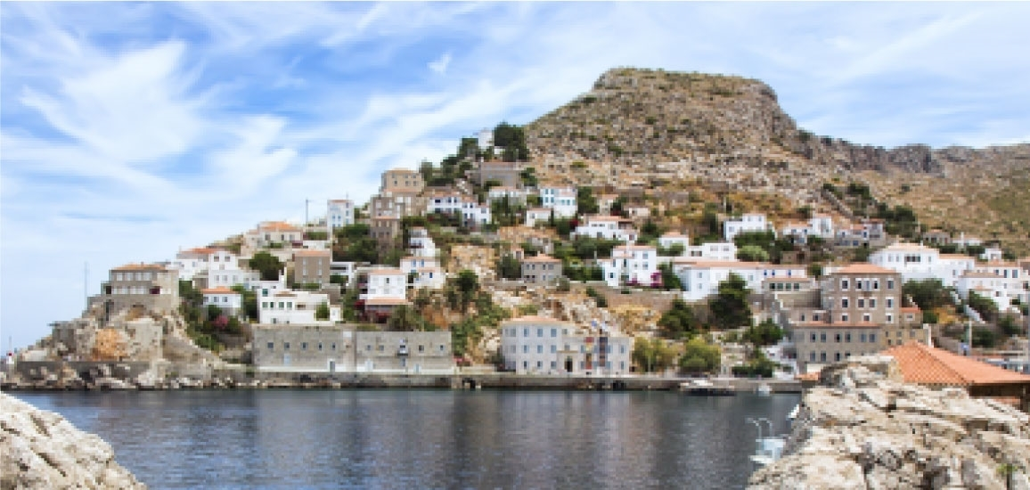 Picture of Hydra