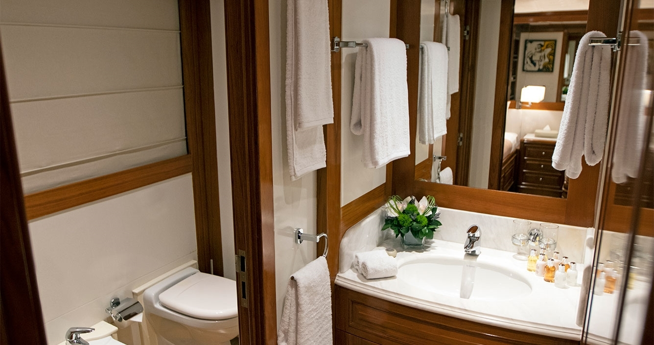 Aspire Lower Deck Twin Bathroom
